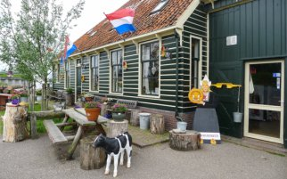 Indulging in Cheese Samples at a Dutch Cheese Farm