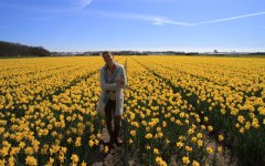 Enjoy the marvels of the most beautiful flower fields