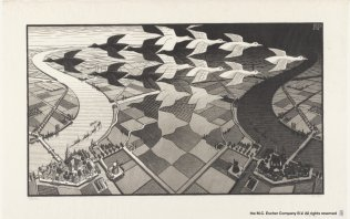 Escher : une immersion dans l'illusion