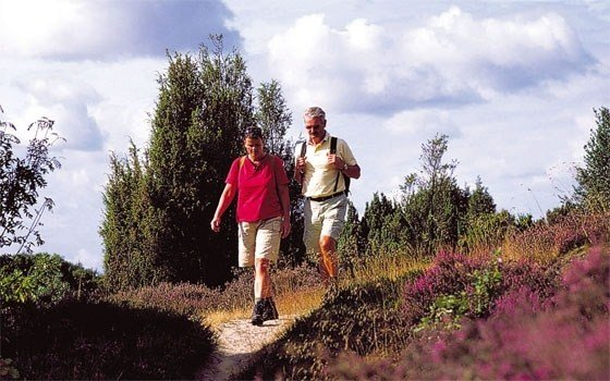 Two people hiking on the Veluwe