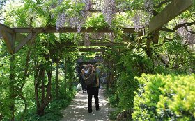 Botanische Tuin Leiden : Hortus botanicus leiden discover the botanical garden holland