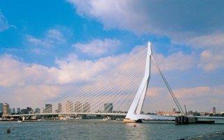 鹿特丹发现之旅