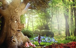 Efteling Theme Park Resort announces new rollercoaster ride