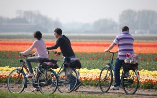 Cycling holiday: Flower bulb fields