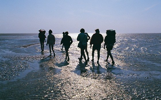Group of people hiking on the waddengebied