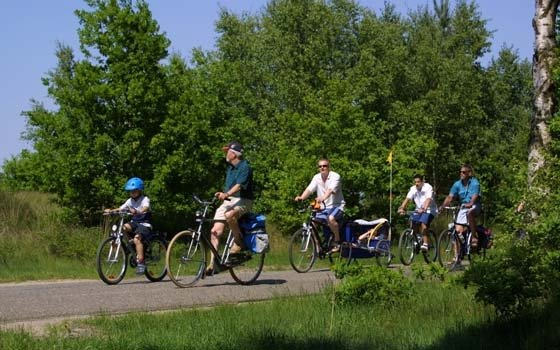 People cycling through limburg