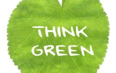 What's the buzz about Green Meetings