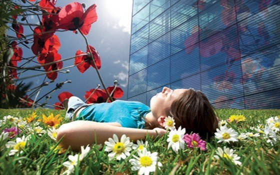 Floriade - girl lying in grass.