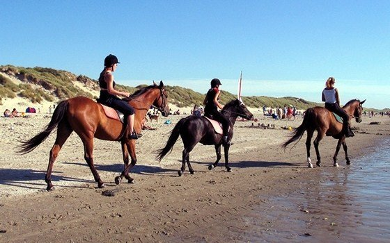 Woman riding their horses on the beach