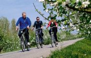 Book a bicycle holiday