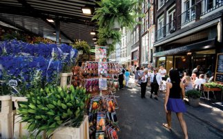The best flower markets in Holland
