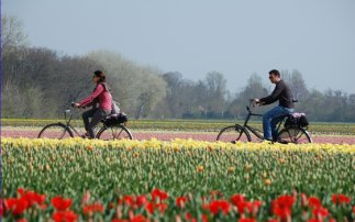 Cycling with Kids: northern Zuid-Holland tour