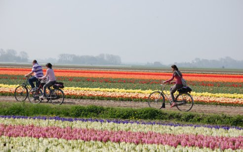7. Bicycling through Holland