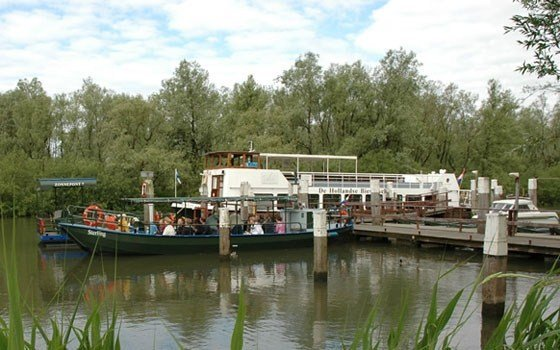 Cruises at the National Park the Biesbosch