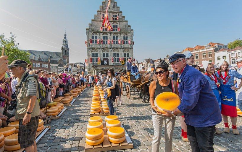 Besuche den Käsemarkt von Gouda - hier die besten Tipps - Holland.com
