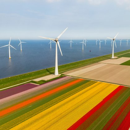 Flevoland aerial view of tulip fields and wind turbines in the noordoostpolder municipality
