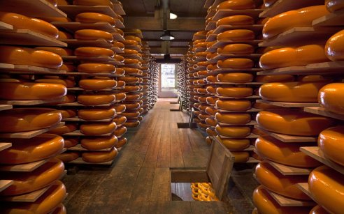 Cheese Valley: Gouda and beyond