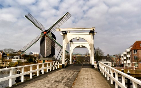 5 Reasons to Visit the City of Leiden