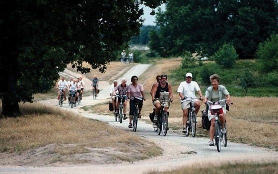 A group cycling over the Heath