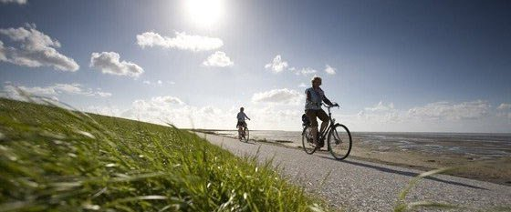 Bicycle holidays in Holland