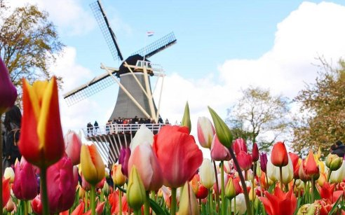 Holland is so much more than just Amsterdam!