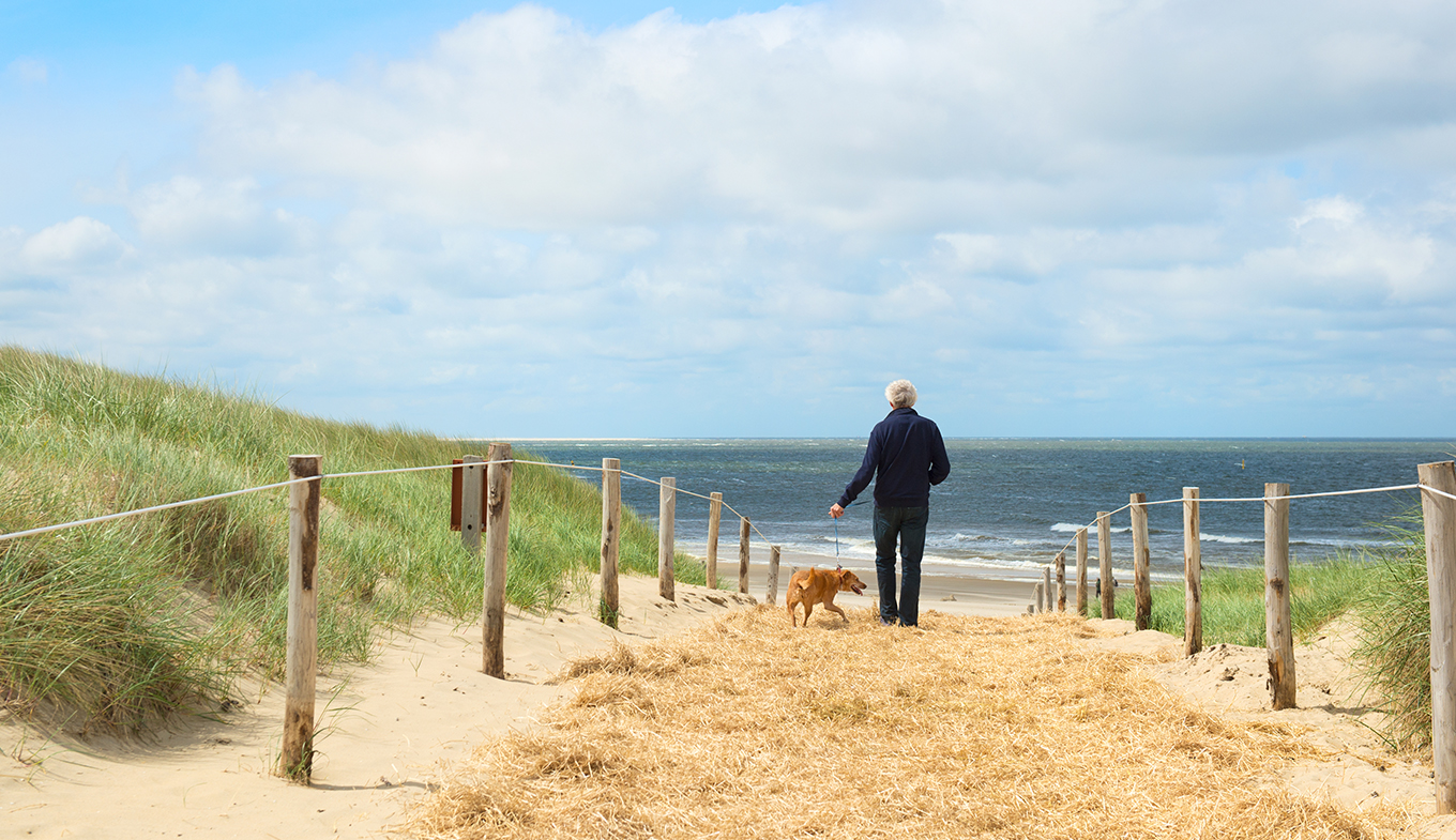 Texel man and dog