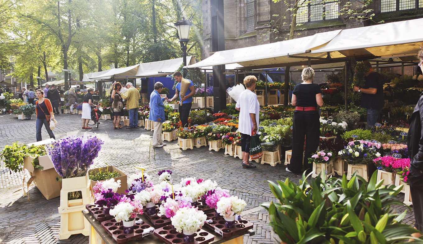 Flower market at Janskerkhof, Utrecht