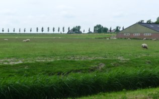 Beemster Polder: A UNESCO Site in the Countryside