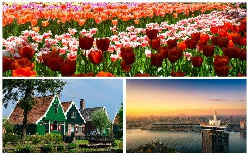 Excursion: Keukenhof, Zaanse Schans U0026 Amsterdam LOOKOUT