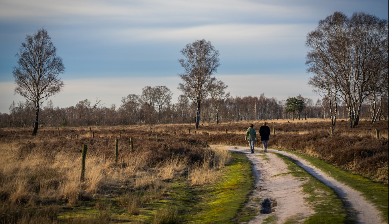 Nationaal Park De Groote Peel - Holland.com