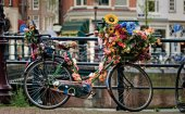 Types of bikes in Holland