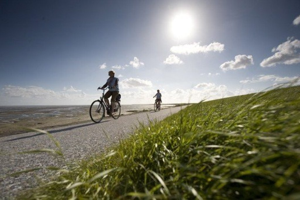 People cycling near the Waddensea
