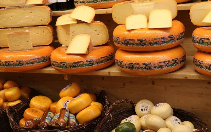 Consejos Para Visitar El Mercado Del Queso De Alkmaar Holland Com