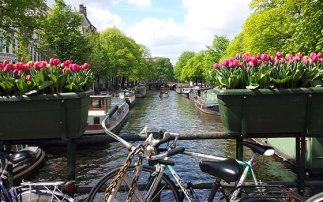 6. Enjoy the canals
