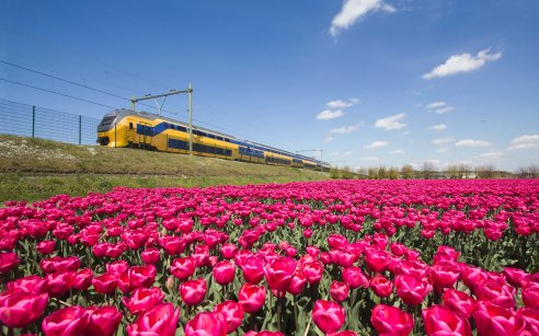The best itineraries by public transport
